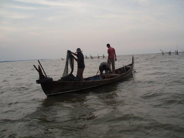 Kiara: Pengawasan Ikan Lemah Karena Ketidakjelasan Kewenangan
