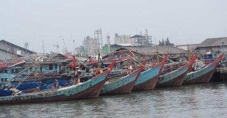 KIARA: RUU Pengelolaan Pesisir dan Pulau Kecil Rugikan Nelayan