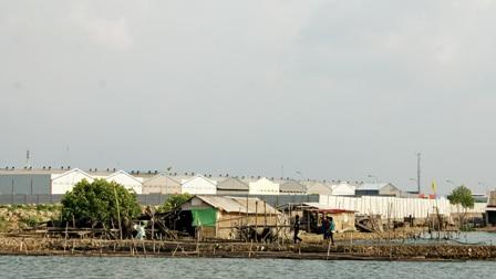 Menghadang Kiamat Ekologi di Teluk Palu