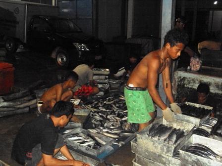 Perdagangan Ikan Dunia Belum Sejahterakan Pelaku