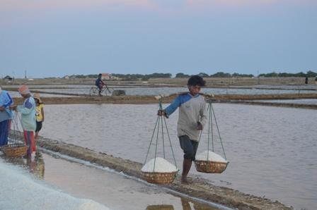 Mutu Garam Membaik, Petani Minta Tutup Kran Impor