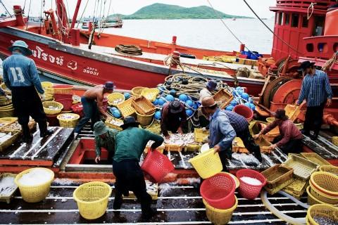 Kabar Bahari: Perbudakan di Perdagangan Ikan Dunia