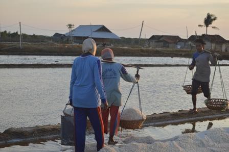 Impor Ikan Asin dan Garam, Bukti Negara Tak Mampu Kelola Industri Laut